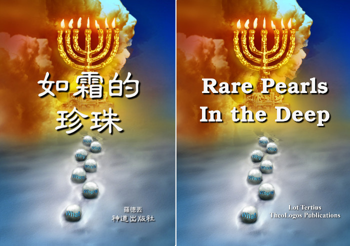 第四本:《天天拾嗎哪(I):如霜的珍珠》 Book 4: Daily Manna (I): Rare Pearls in the Deep